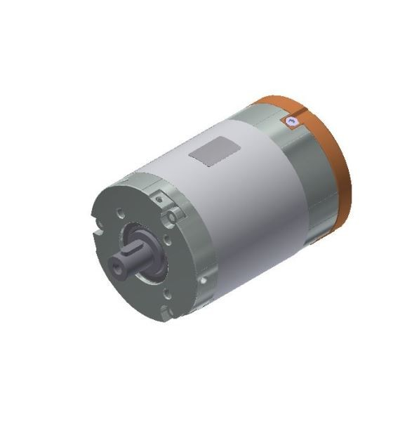 BLDC Motor 24V digital